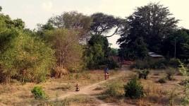 09 wioska, Tanzania