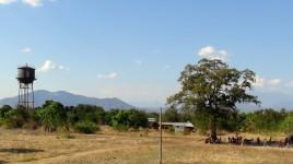 11 w górach Tanzanii