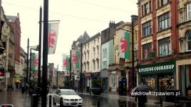 17, Cardiff