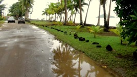 09- Wallis, pora deszczowa