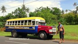 10- Samoa, autobusy publiczne