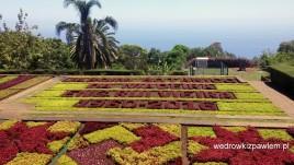 16-Punchal, ogród botaniczny