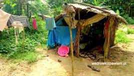Pigmeje, Kamerun, chata-mieszkalna