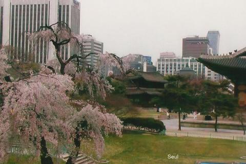 Seul,Azja, Seul,palac krolewski,podroz,globtroterzy polscy,lodzki podroznik,