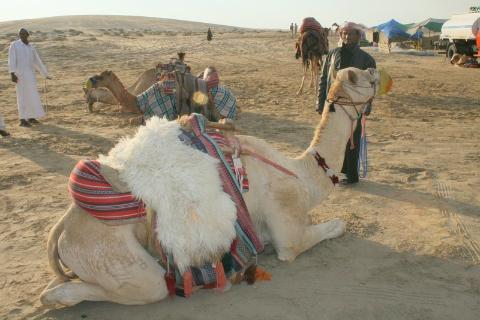 ,zatoka arabska,ropa naftowa,kraj arabski,polski podróżnik,podróż samotna,