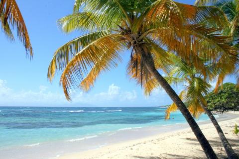 Gwadelupa,morze karaibskie,rajska wyspa, podróżnik,polscy globtroterzy,polski podróżnik, dalekie wyprawy, podróże na krańce ziemi ,tramp, tanio w świat,