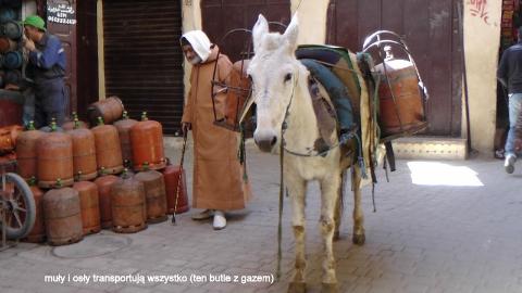 muły i osły transportują wszystko (ten butle z gazem),Gibraltar,Sahara,Góry Atlas,Atlas Niski i Wysoki,kraj arabski,królestwo Maroka,medyny Maroka,