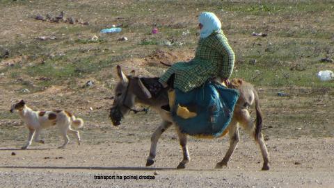 transport na polnej drodze,Gibraltar,Sahara,Góry Atlas,Atlas Niski i Wysoki,kraj arabski,królestwo Maroka,medyny Maroka,