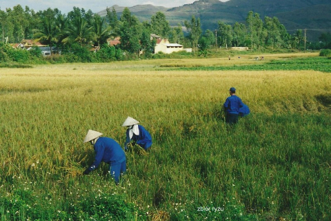 zbior ryzu,Azja, hue,hanoi,halong, prelekcje,spotkania,fimy  podroznicze,podroznik,