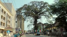 Sierra Leone 03