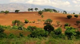 12 Tanzania wzgórza i sawanny