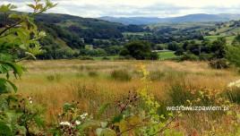 14, Snowdonia i pola
