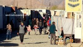 16- Murob, bazar w kontenerach