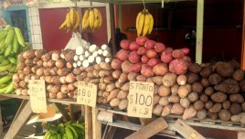 07- Bourda Market