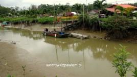 14- wioska i plantacja Aliance