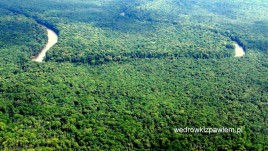 20- Amazonia w Gujanie