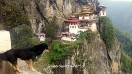 27- Taktsang Gompa Gniazdo Tygrysa- 600 m wyżej niż dolina rzeki