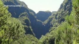 14- Madera, rezerwat Laursilva, UNESCO, wodospad Risco