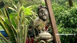 Duala, pamiatki do ogrodu