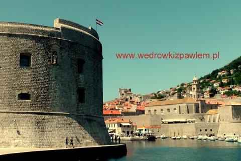 www.wedrowkizpawlem.pl