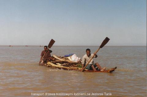 transport drzewa trzcinowymi lodziami na Jeziorze Tana,Lalibela,Axum,kosciol koptyjski,