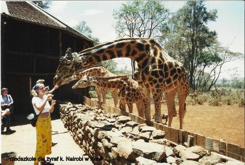 Przedszkole dla zyraf k. Nairobi w Kenii,Afryka,zoo,zwierzeta, Masaj mara, sarangeti,bawoly, krokodyle,gnu,Masaj,wioska masajow,