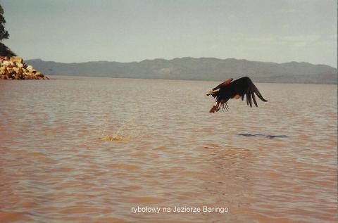 rybolowy na Jeziorze Baringo,