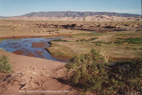 diuny Wydm Hongoryn Els ,na pustyni Gobi,