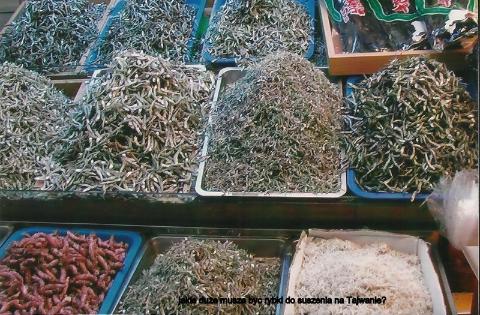 jakie duze musza byc rybki do suszenia na Tajwanie?wyspa,Taj Pej,Czang Kaj szek, polski globtroter,prelekcje,spotkania,filmy z wypraw,podróży,
